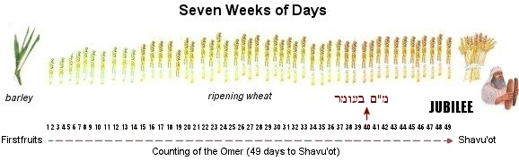 49 Days of Omer